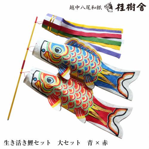 【桂樹舎】 069 鯉のぼりセット大セット(青×赤) 日本の心がこもる【越中八尾の和紙】
