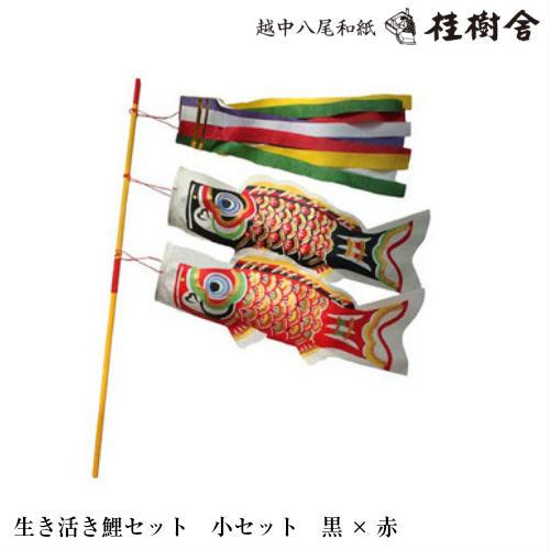 【桂樹舎】 069 鯉のぼりセット小セット(黒×赤) 日本の心がこもる【越中八尾の和紙】