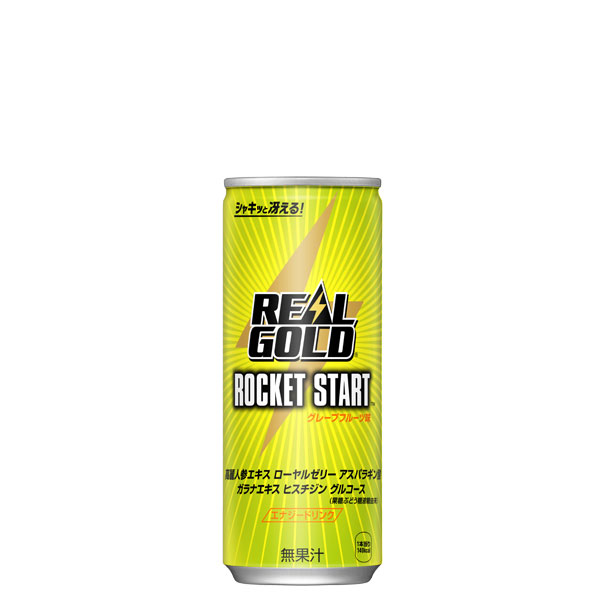 コカ・コーラ リアルゴールド ロケットスタート 缶 250ml 30本入×2ケース
