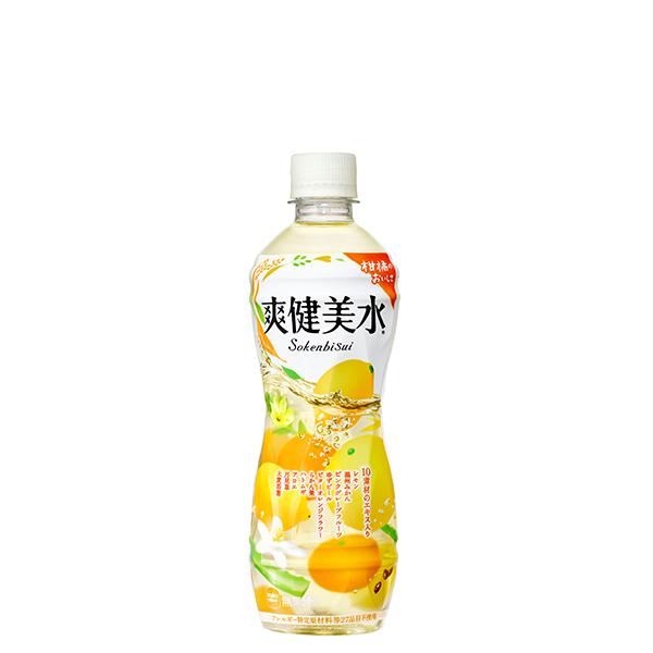 コカ・コーラ 【企業向け30ケースセット】爽健美水 PET 500ml 24本入×30ケース
