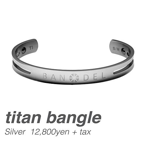 バンデル チタン バングル Silver ※メール便送料無料 (宅配便利用可/送料別途追加)