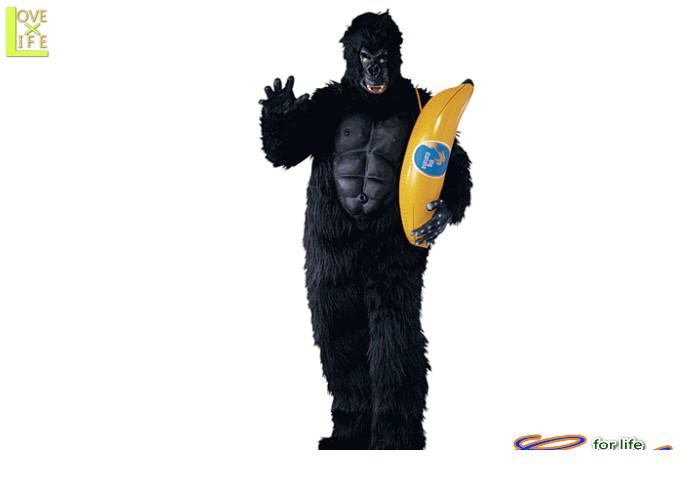 メンズ 16R60 ゴリラ キングコング 猿 仮装 パーティ フルフェイスでゴリラそのもの!!大人サイズコス♪☆AOIコレクションのコスプレシリーズ♪コスプレ 衣装 コスチューム    大