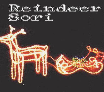 トナカイセット クリスマス イルミネーション【20 】【送料無料】【クリスマス】【イルミネーション】【電飾】【モチーフ】【大人気】
