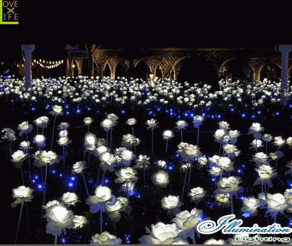 【イルミネーション】ローズ【バラ】【薔薇】【フラワー】【お花】【お花畑】【はな】【LED】【クリスタル】【電飾】【モチーフ】【クリスマス】【かわいい】