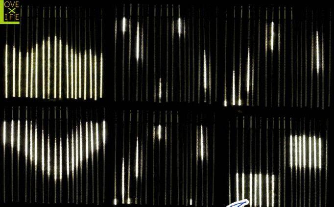 【LEDライト】【20 】LED ウェーブカーテンライト【972球】ビッグなウェブカーテン♪変幻自在の輝きで目立っちゃいましょう♪すごくダイナミックです!【2012年新作】【送料無料】【大人気】【イルミネーション】【LED】【大人気】