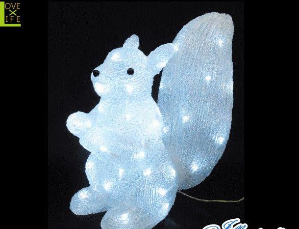 【20 】LED リス【動物】【3D】【立体】【アニマル】【シマリス】【LED】アニマルシリーズに小動物の可愛さ満点のリスが登場♪【送料無料】【クリスマス】【イルミネーション】【電飾】【モチーフ】