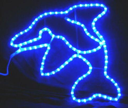 ドルフィン LED