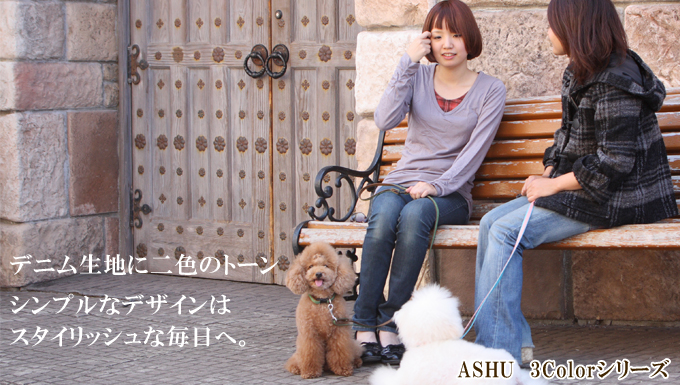 ASHU 3color [three color: size: s 5P13oct13_b