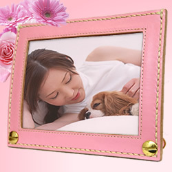 Put the photo frame name, put the name of the pet dog cat stand name order photo dog sympathy condolence gift cat pet mitomo birthday presents gift