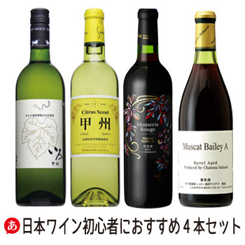 日本ワイン 厳選2種 赤白4本セット 甲州とマスカットベリーA ワインセット 日本ワイン甲州ワイン 国産ワイン 山梨