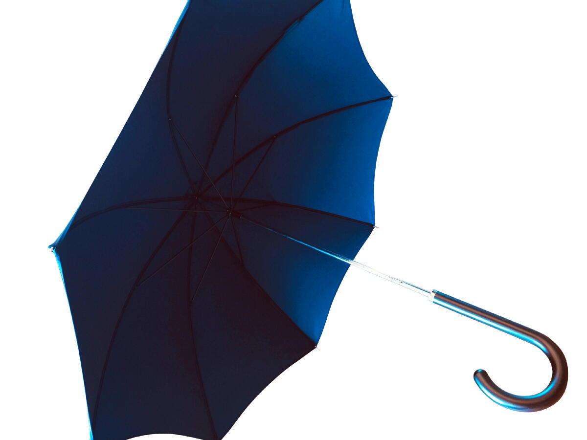 【あす楽対応】 傘 レディース 婦人 雨傘 長傘 英国製 最古参 JamesInce&Sons ジェームスインス 木製ハンドル F Navy ネイビー Size 82cm(321/4in) U014