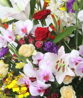 お祝い用スタンド花 1段 生花 【送料無料】【花恭】【クール便】