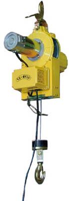 【送料無料】トーヨーコーケン ベビーホイスト <BH-N930> ワイヤー30m(操作コード10m)定格荷重200kg 有線スイッチ【bhn930 ウインチ 巻き揚げ機 吊り具 ヘリ クレーン トロリー ワイヤー 電動 激安 通販 おすすめ 人気 価格 安い】