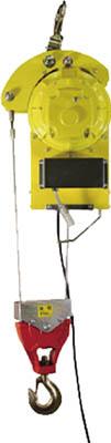 トーヨーコーケン 二本掛けベビーホイスト <DB-N930R> ワイヤー15m 定格荷重400kg 無線スイッチ【dbn930r ウインチ 巻き揚げ機 吊り具 アーム 資格 手動 ワイヤー 荷揚げ機 電動 激安 通販 おすすめ 人気 価格 安い】