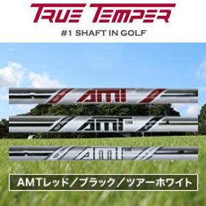 TRUE TEMPER Dynamic GoldAMT RED/BLACK/TOUR WHITEゥルーテンパー ダイナミックゴールドAMT レッド/ブラック/ツアーホワイト アイアンシャフト6本(#5~Pw)