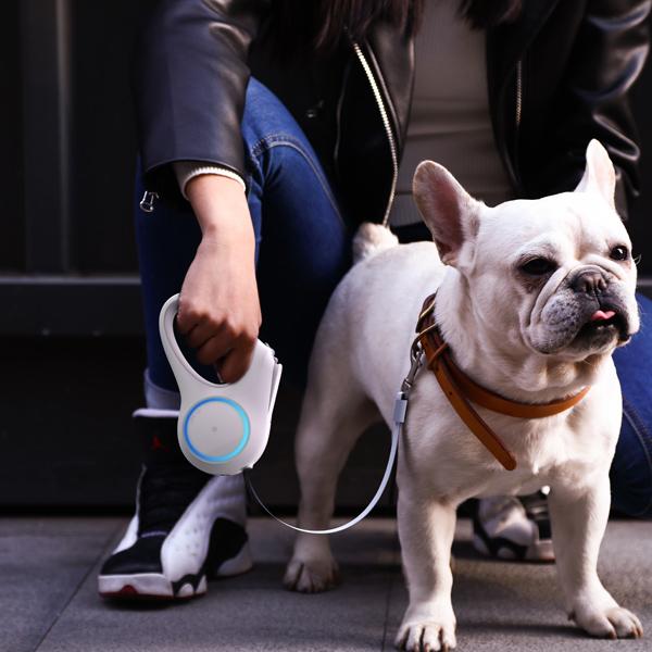 夜のお散歩が楽しくなる伸縮式リード水 PETKIT ゴーシャイン・リード ペットキット【犬/ライト/お散歩/リード】