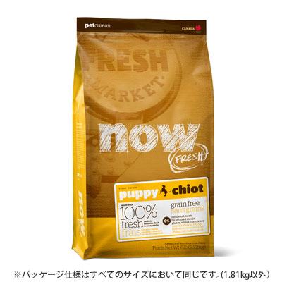 新鮮な食材 ナウフレッシュ グレインフリー パピー 11.34kg ドッグフード NOW FRESH Grain Free【子犬/ドッグフード/】
