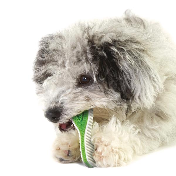 遊びながらデンタルケア Petstages ペットステージ デンタル フィニティ スモール【犬/おもちゃ/噛む/歯みがき】