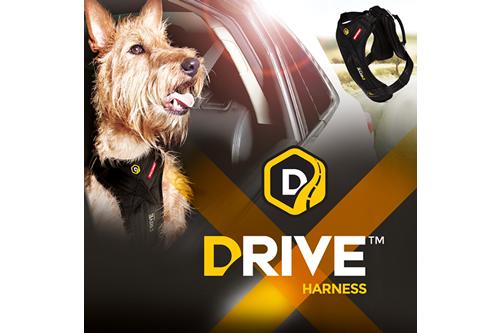 []本格的なドライブハーネス EZY DOG ドライブハーネス Sサイズ 【犬/車/ドライブ/ハーネス】