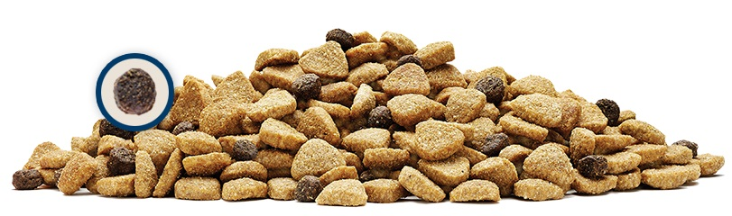 ブルーバッファロー チキン&玄米レシピ 高齢犬 2.5kg ドッグフード ライフプロテクション・フォーミュラ 【犬/自然素材/シニア犬】