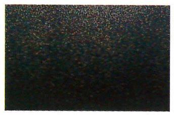 【3,980円以上のお買い上げで送料無料】送料無料 最高級60本胴本漆変り塗 黒カンシツ塗