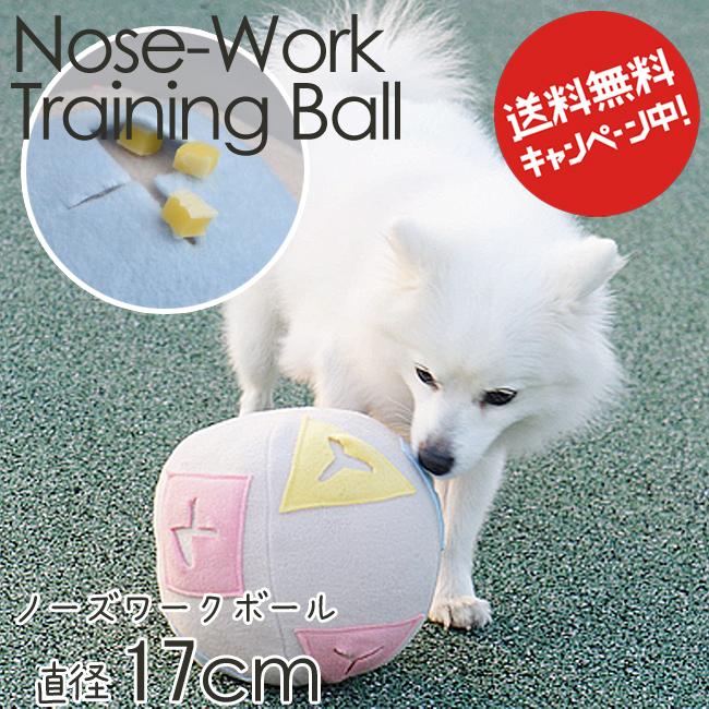 トレーニング ボール ノーズワーク 老犬の運動不足 無気力でも安心 認知症対策 在庫処分 全品送料無料 ドッグ 犬用 NS おもちゃ ペット ワンちゃん わんちゃん大好きシリーズ しつけ
