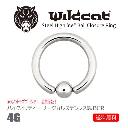 送料無料 消費税込 ボディピアス リング BCR Ball Closure Ring 4G ボールクロージャーリング サージカルステンレス ニップル ハイクオリティ 316L ヘリックス 数量は多 トラガス コンク Wildcat タンリム ワイルドキャット リップ Clip-in イヤーロブ