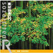 素材辞典[R(アール)] 010 四季・日本の花木【メール便可】
