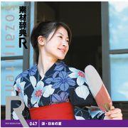 素材辞典[R(アール)] 047 涼・日本の夏【メール便可】