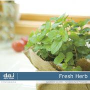 【特価】DAJ elm004 Fresh Herb【メール便可】