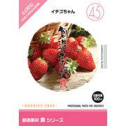 創造素材 食シリーズ[45]イチゴちゃん【メール便可】