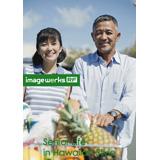 Image Werks RF 38 Senior Life in Hawaiian Style〈シニアライフ イン ハワイアンスタイル〉【メール便可】