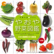 マルク 生鮮の素プラス やおや野菜図鑑【メール便可】