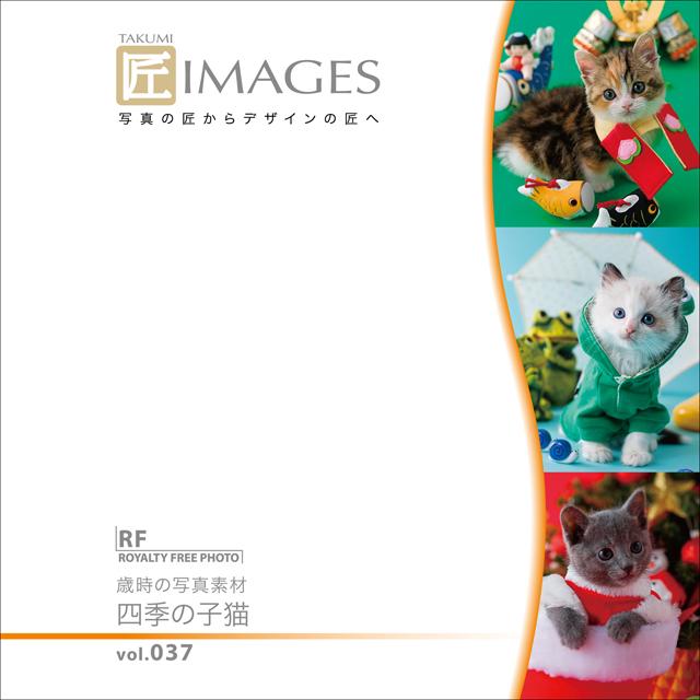 匠IMAGES Vol.037 歳時の写真素材 四季の子猫【メール便可】