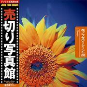 売切り写真館 JFI 020 JFI 花/フラワーシーン Flowers【メール便可 売切り写真館】, 小林時計店:8e909ff2 --- luzernecountybrewers.com