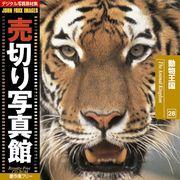 売切り写真館 JFI 028 動物王国 The Animal Kingdom【メール便可】