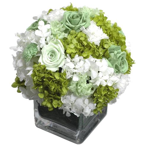 プリザーブドフラワー グリーン ROUND(M) 母の日 プレゼント 仏花 [Millefiori公式ショップ]