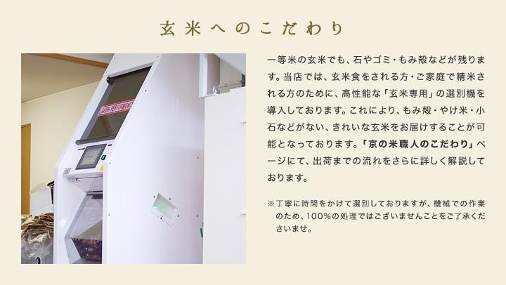 佐賀県産 さがびより 特別栽培米 30kg(5kg×6袋)30年産米 お米 分つき米 玄米