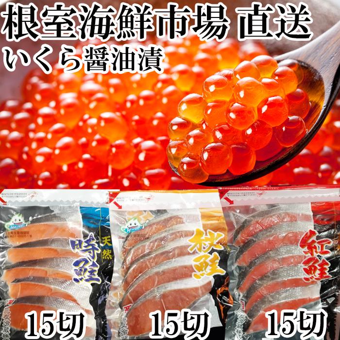 ふるさと納税 (訳ありセール 格安) 人気 いくら醤油漬け80g×2P 秋鮭 時鮭各15切 B-14007 紅鮭