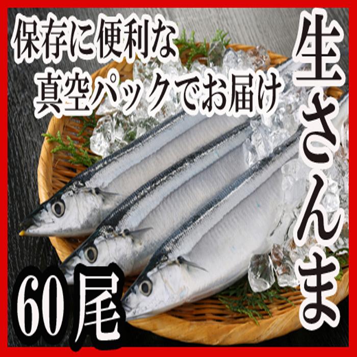 【ふるさと納税】 [北海道根室産]さんま60尾 D-30002
