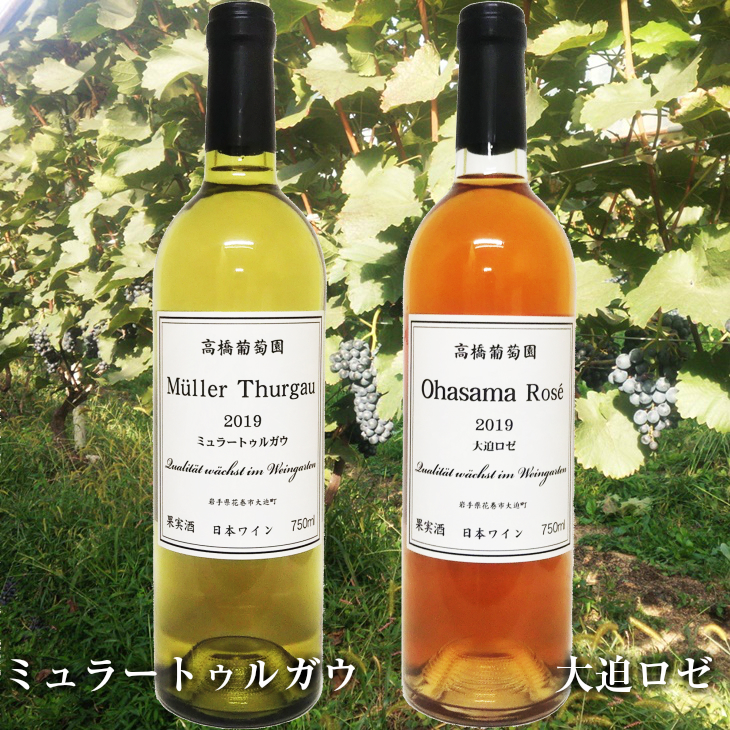 【ふるさと納税】高橋葡萄園 ミュラートゥルガウ&大迫ロゼ 2本セット 日本ワイン 750ml×2本