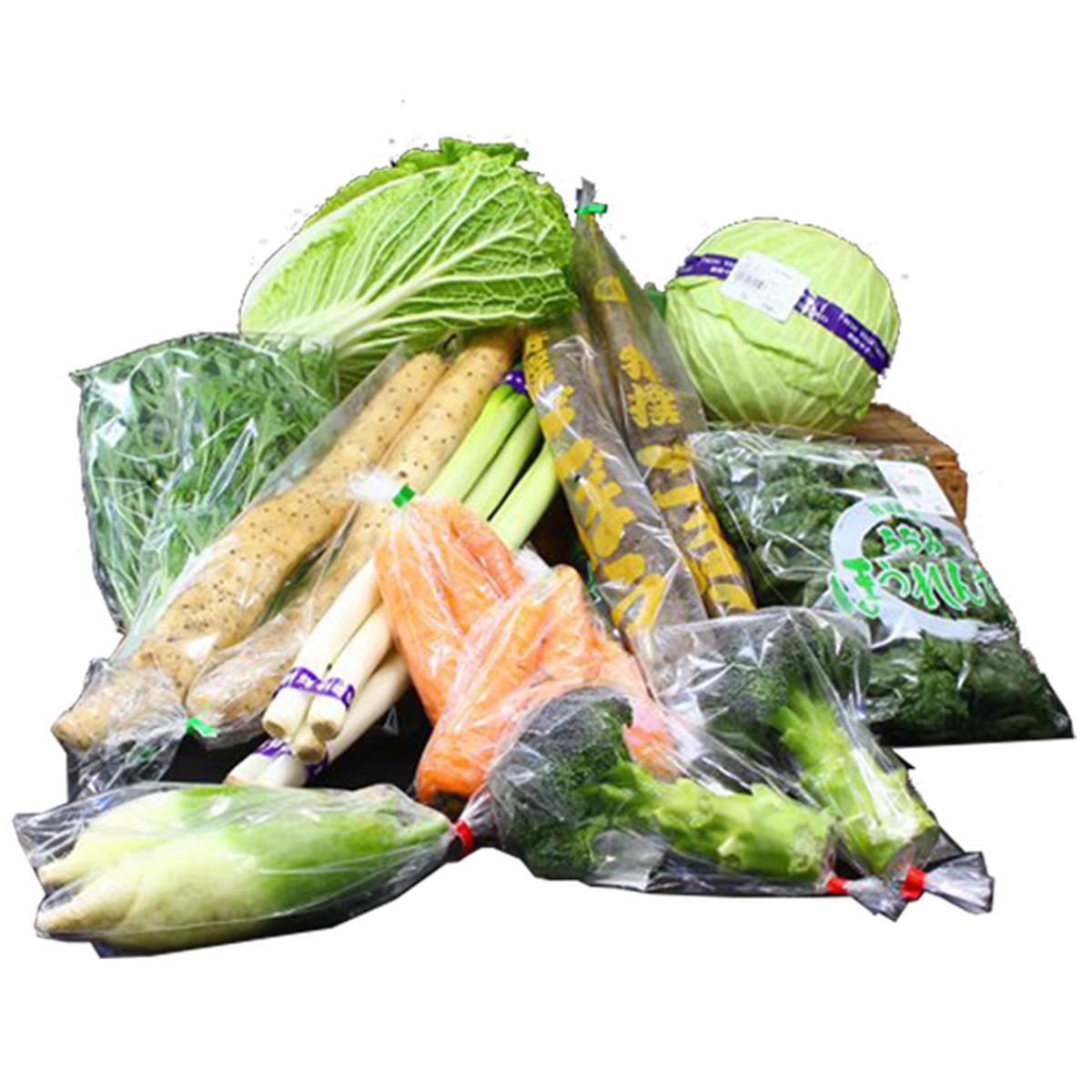 【ふるさと納税】野菜おまかせ詰め合わせセット
