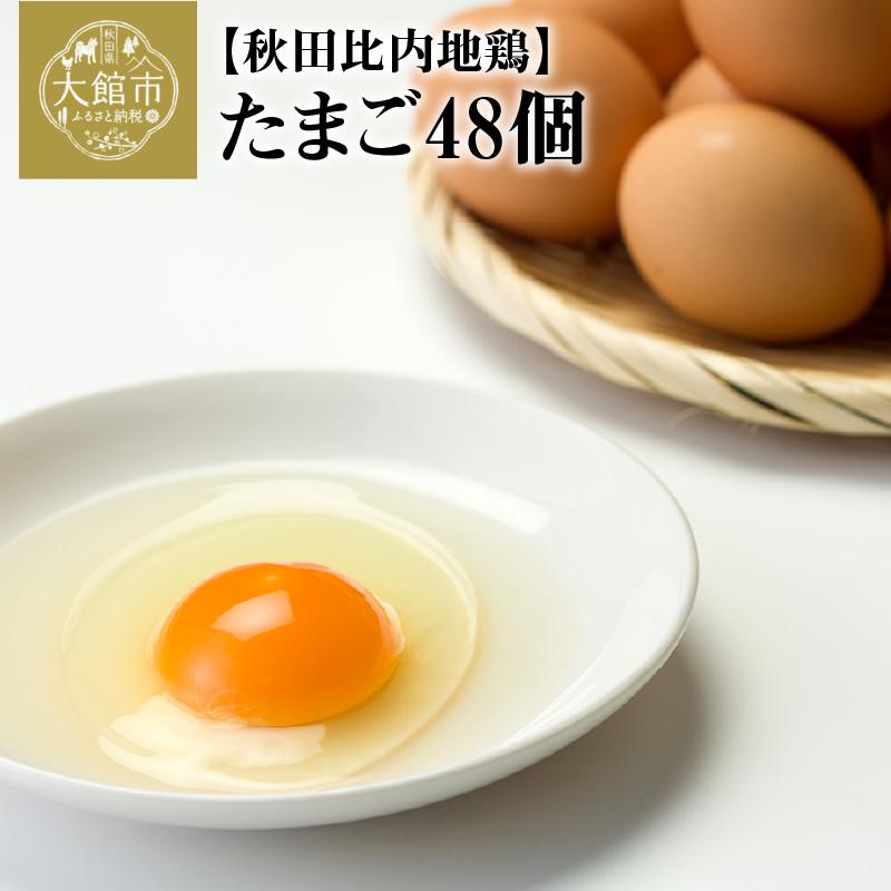 【ふるさと納税】40P5303 秋田比内地鶏たまご48個