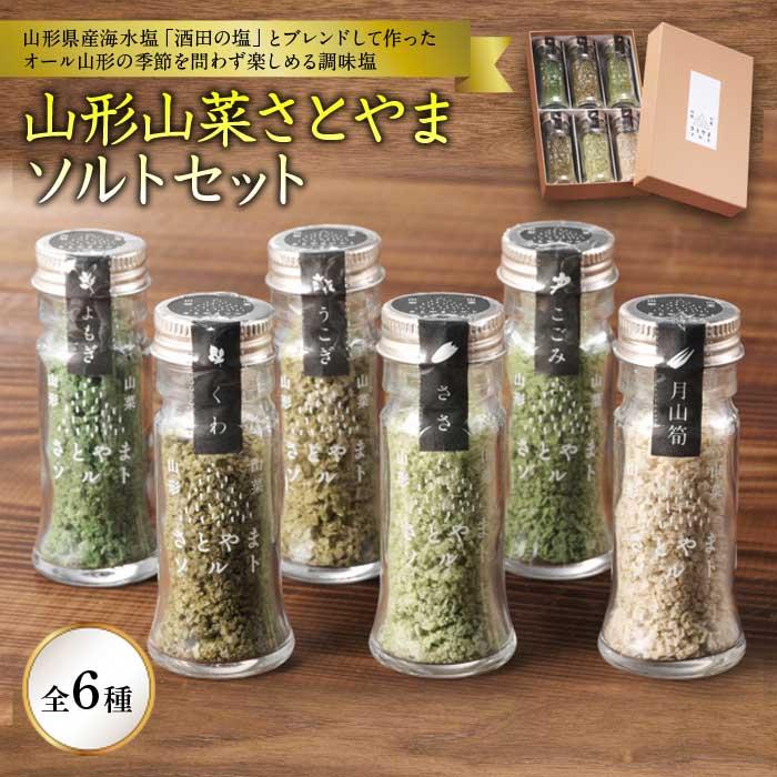 安い 激安 プチプラ 高品質 ふるさと納税 山形山菜さとやまソルトセット オンラインショップ F2Y-1201