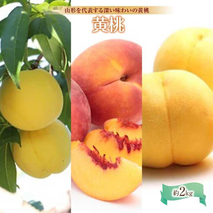 ふるさと納税 市場 激安セール 黄桃約2kg F2Y-1439