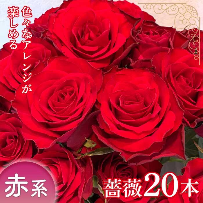 ふるさと納税 旬の 贈与 薔薇20本 F2Y-1638 赤系 買い取り 薔薇名産地山形
