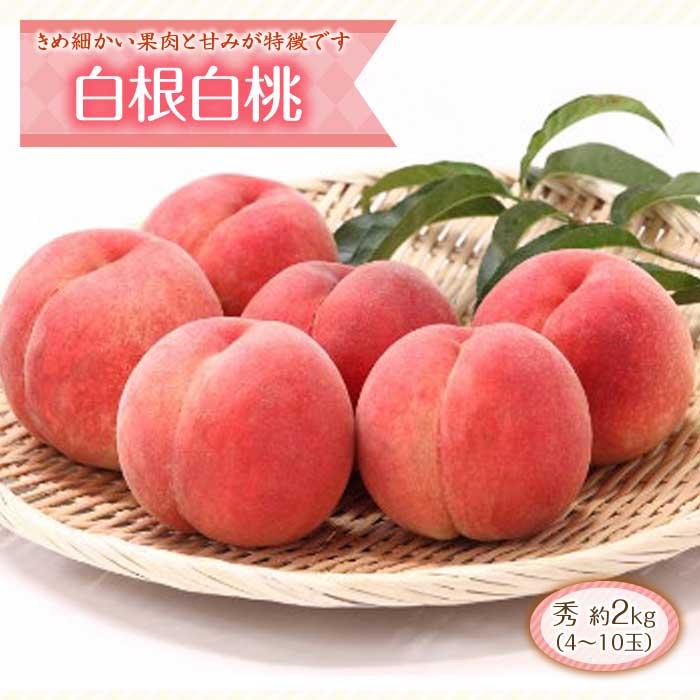 ふるさと納税 桃のメジャー品種シリーズパート3 無料サンプルOK 白根白桃 約2kg F2Y-1801 新品未使用