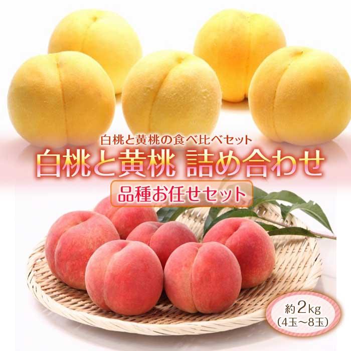 ふるさと納税 どちらも食べたい 白桃と黄桃の食べ比べセット 2kg 新作多数 受賞店 F2Y-1802