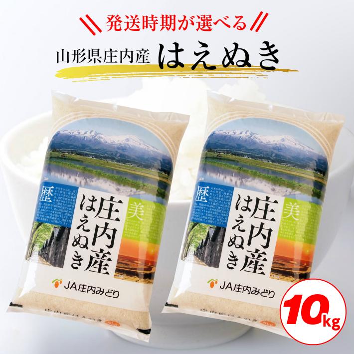 山形県酒田市 【ふるさと納税】はえぬき 5kg×2袋 計10kg 令...