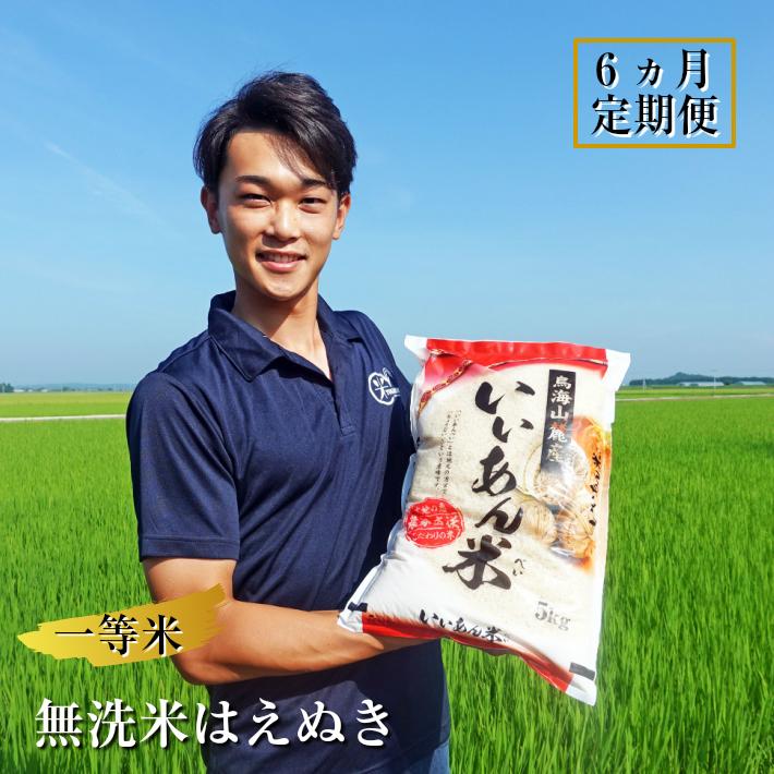 【ふるさと納税】≪定期便≫新米 一等米 無洗米はえぬき 5kg×6ヶ月連続 計30kg 令和2年産米 山形県庄内